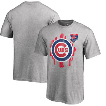 Chicago Cubs Fanatics Branded 2018 MLB Spring Training Vintage T Shirt Heather Gray