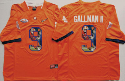 Clemson Tigers 9 Wayne Gallman II Orange Portrait Number College Jersey