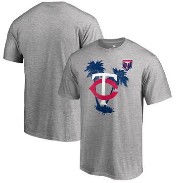 Minnesota Twins Fanatics Branded 2018 MLB Spring Training Vintage T Shirt Heather Gray